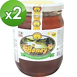 BuDer 標達 100%純淨天然草原蜂蜜(700g/罐)*2件組