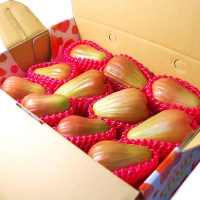 鮮果日誌 - 六龜鄉特級香水蓮霧 (4斤禮盒)