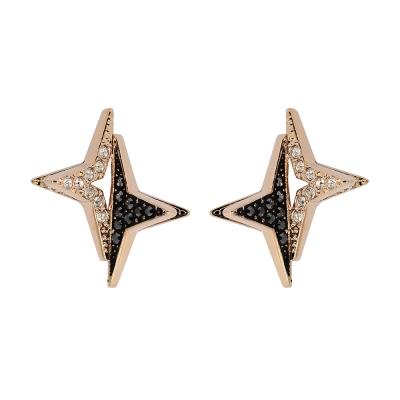 SWAROVSKI 施華洛世奇 雙色水晶北極星造型玫瑰金耳環