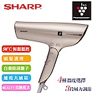 SHARP夏普 自動擊菌離子速乾吹風機/香繽金 IB-GP9T-N