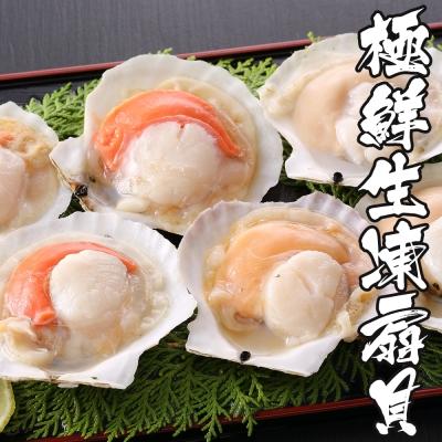 海鮮王 極鮮生凍扇貝*4包組(500g±10%/包)(6顆/包)