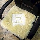 范登伯格 - 羊毛立體單人坐墊-  (40 x 40cm)