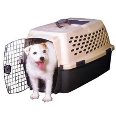 Petmate《寶萊》Kennel Cab 寵物運輸籠-33P