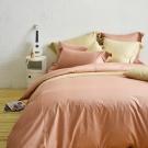 Cozy inn 簡單純色-梅子咖-200織精梳棉四件式被套床包組(加大)