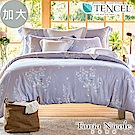 Tonia Nicole東妮寢飾 初夏琉光環保印染100%萊賽爾天絲被套床包組(加大)