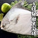 海鮮王 高級鮮嫩白鯧 *2尾組( 500G-600G±10%/尾/斗鯧 )