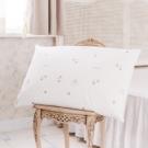 鴻宇HongYew 美國棉授權 防蹣抗菌加大型乳膠枕2入