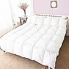 凱蕾絲帝 貴族級(90%純羽絨)立體車邊-純棉羽絨被-雙人(6*7)羽絨毛量1.2kg