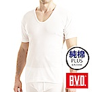 BVD 低毛羽技術親膚純棉U領短袖衫-單件