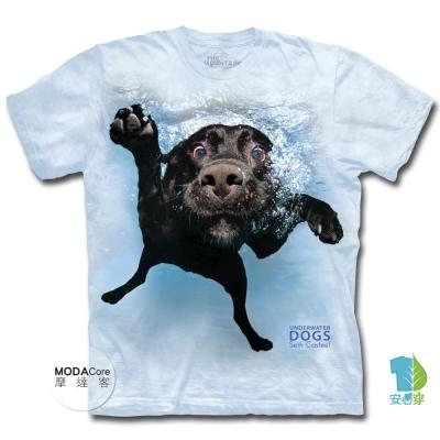 摩達客 美國進口The Mountain 水中拉布拉多黑狗兄 短袖T恤