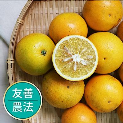 【果物配-任選699免運】柳丁.友善農法(600g /4~5顆)