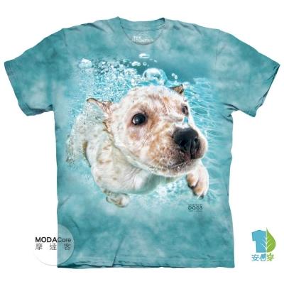 摩達客 美國進口The Mountain 水中拉布拉多獵犬牧羊犬混血 短袖T恤