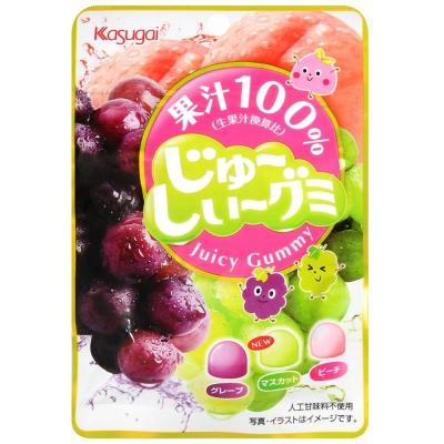 春日井製果 綜合水果軟糖(53g)