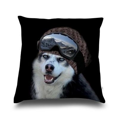 法國數位藝廊-狗狗抱枕/靠墊-哈士奇雪橇犬-含芯/40x40