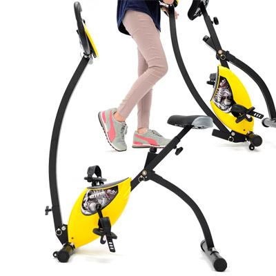 黃天鵝飛輪式磁控健身車
