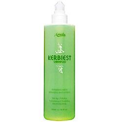 Amida 葉綠素洗髮精兩入組(500ml*2)