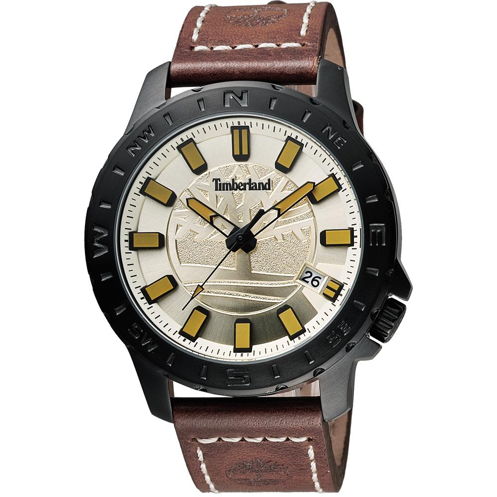 Timberland Waterville 探險家時尚腕錶-金x咖啡/45mm