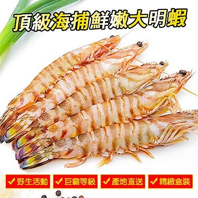 馬姐漁舖 頂級海捕鮮嫩大明蝦(10尾/盒)