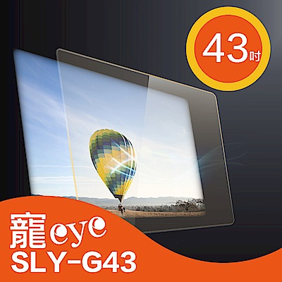 寵eye 43吋 抗藍光 螢幕 護目鏡 SLY-G43