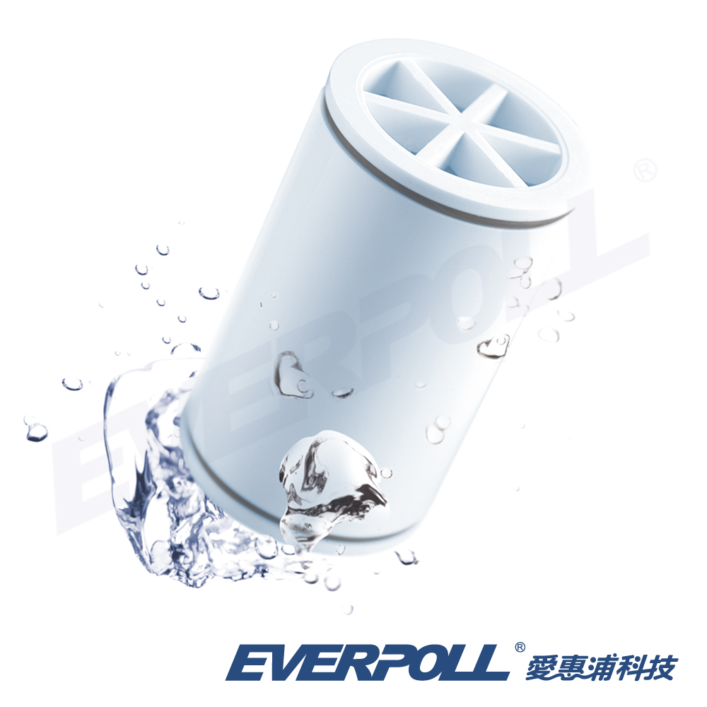 EVERPOLL愛惠浦科技 微分子SPA沐浴器 / 潔膚器專用濾芯