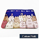 棉花田 可愛動物 法蘭絨防滑踏墊-微笑貓(二件組)