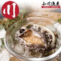 小川漁屋 極品南非活凍帶殼鮑魚4包(500G+-10%包/約6~8粒)