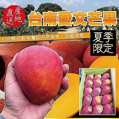 【天天果園】台南愛文芒果 x5斤 (9~12顆入)