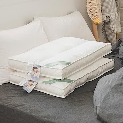 翔仔居家 物理防螨水洗枕-中低款(45cmx74cm)
