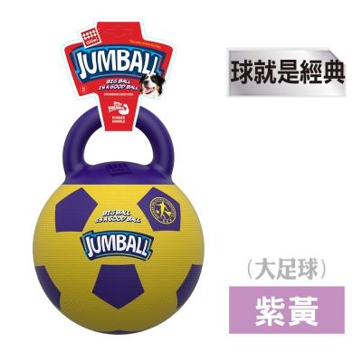 GiGwi球就是經典-玩具大足球(紫黃)