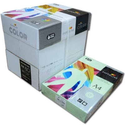 PAPERLINE 130 / 80P / A4 蘋果綠  彩色影印紙  (500張/包)
