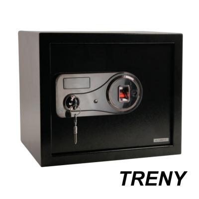 TRENY 指紋雙鑰匙保險箱 中 30FIN
