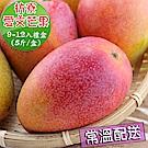 愛蜜果 枋寮愛文芒果9-12顆禮盒(約5斤/盒)