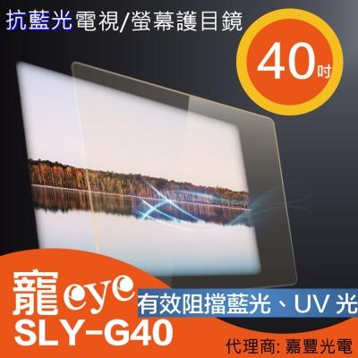 寵eye 40吋 抗藍光螢幕護目鏡 (SLY-G40)