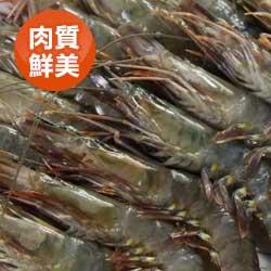 鮮甜草蝦16尾