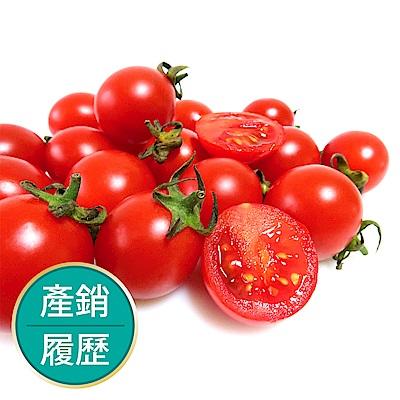 【果物配-任選699免運】聖女小番茄.產銷履歷(350g/1盒)