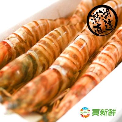 【買新鮮】澎湖野生大明蝦2盒組(450g±10%/盒(約8隻))