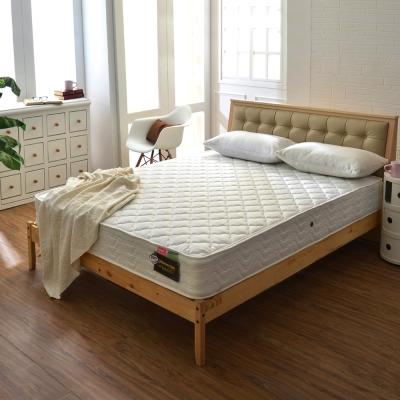 Ally愛麗 防蹣抗菌 3 M防潑水獨立筒床墊-雙人加大 6 尺