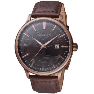 Timberland日間燦爛時尚腕錶(TBL.15260JSQBZ 12)-45mm/古銅