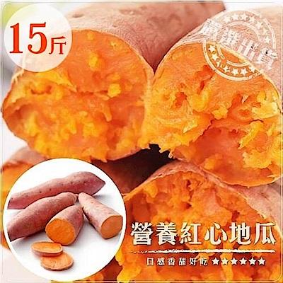 【天天果園】台農66號紅地瓜(15斤/箱)