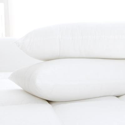 美夢元素 物理性防蹣抑菌 壓縮枕(二入)