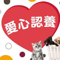 台北國際寵物生活用品&服務展 預售票