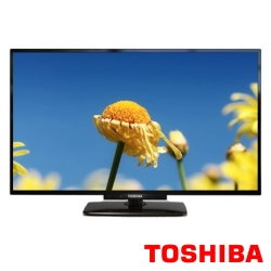 TOSHIBA東芝 24吋 液晶顯示器+視訊盒