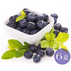 【天天果園】智利空運新鮮藍莓6盒(