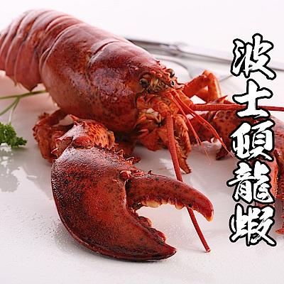 【海鮮王】加拿大進口波士頓龍蝦 2隻組(450g±10%/隻)