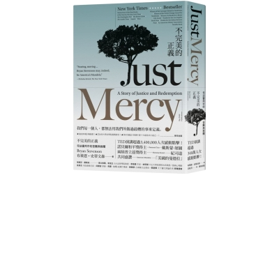 不完美的正義-司法審判中的苦難與救贖