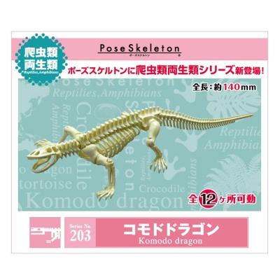 日本正版授權 會亂動的化石 科莫多龍 科摩多巨蜥 擺飾 模型 盒玩 No.203