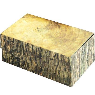KIKKERLAND 不是樹幹收納盒(S)