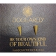 Dogeared 耳環 細緻鉚釘造型 金色