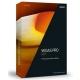 Vegas Pro 14 Edit (影音編輯) 單機版 (下載) product thumbnail 1