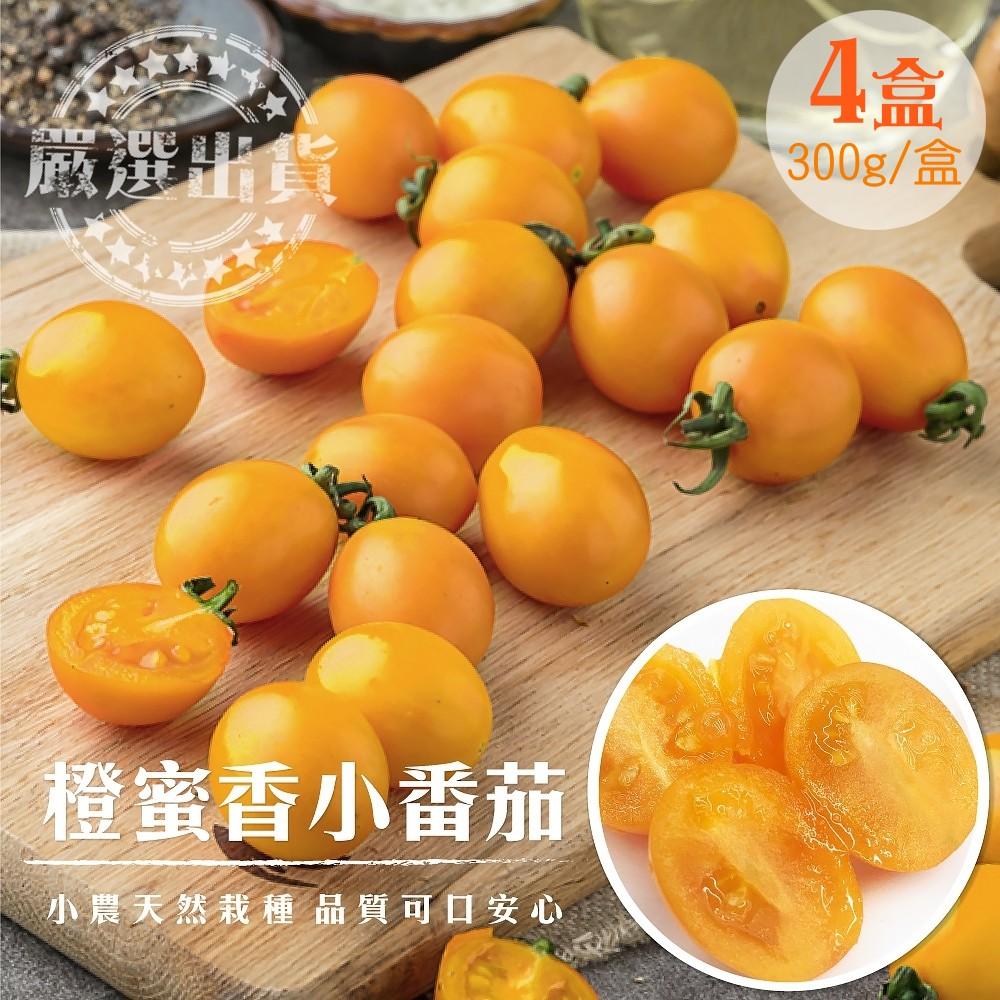 果之蔬-黃金橙蜜香蕃茄-4盒(每盒300g±10%)